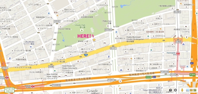 VSS map cropped 2 copy