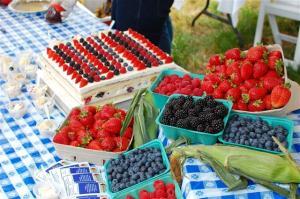 Krause berries