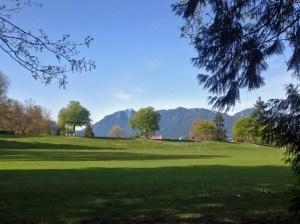 stanley park grass